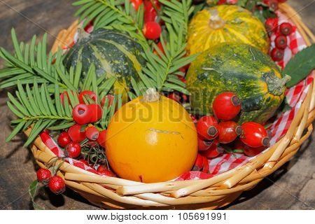 Autumn Decoration, Pumpkin, Gourd, Rose Hips, Berries