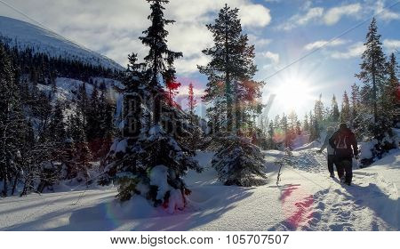 Winter travel ...