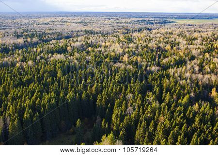 flat plain with autumnal forest aerial view