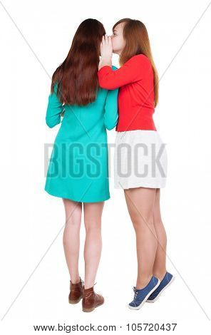 Two young  women friend gossiping.  close up. backside view of person. Isolated over white background. Rear view people collection. standing on tiptoes girl whispers in the ear of his girlfriend.