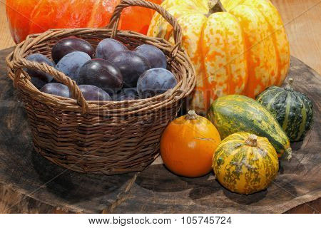 Autumn Decoration, Pumpkin, Gourd, Plums