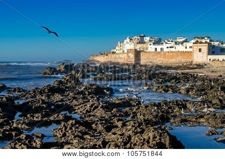 Ancient port and city Essaouira is a very beautiful place