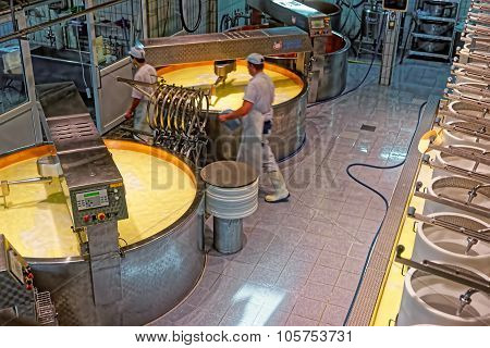 Process Of Production Of Gruyere Cheese At The Cheese-making Factory Of Gruyeres