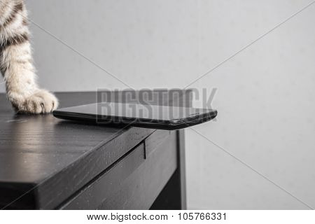 cat is going throw a cell phone on the floor dangerously resting on the edge of the table