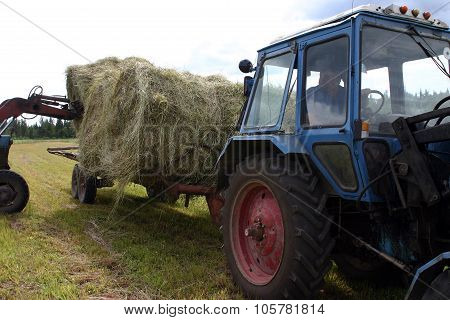 Forklifts Loads In Cereal Tipping Trailer Round Bale Of Hay.