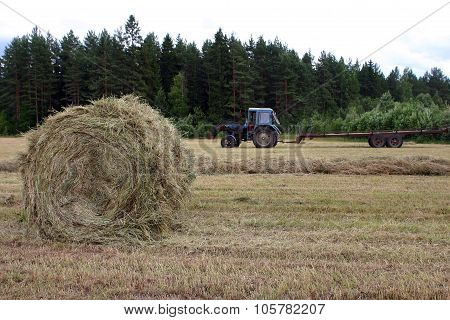 Loading Hay Bales In The Russian Farm.