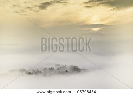 Bright Saturated Color Dawn Above The Sea Of Fog Over The Forest