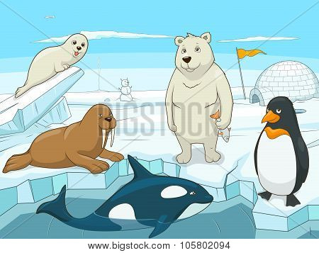 Arctic animals educational game for kids vector