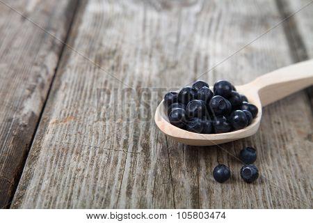 Ripe Blackberries In A Wooden Spoon