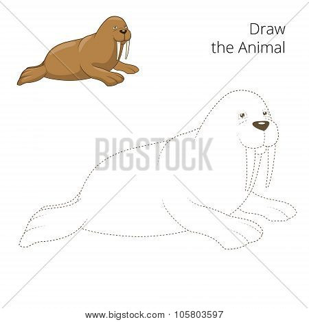 Learn to draw animal walrus vector illustration