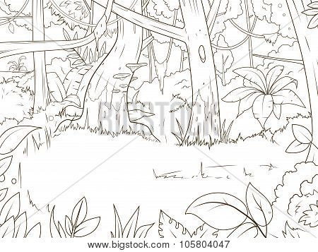 Jungle forest cartoon coloring book vector