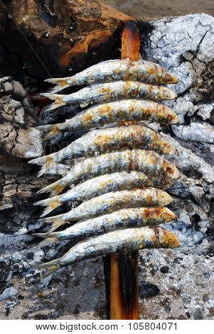 Sardines on a beach barbecue, Fuengirola.