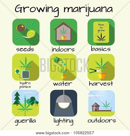 Marijuana growing icon set.