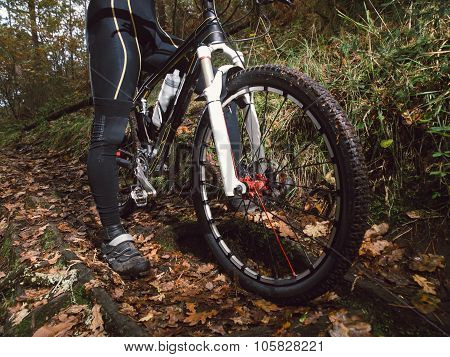Mountain Bike Bycicle Detail