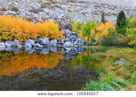Perfect reflections in a small mountain lake