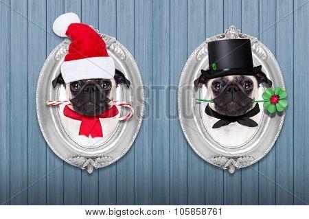 Christmas Dog As  Santa Claus And Chimney Sweeper