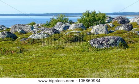 Stones on the deserted island