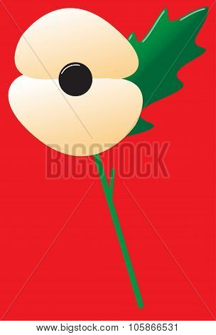 Poppy White With Leaf