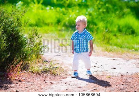 Little Boy Hiking In A Forest