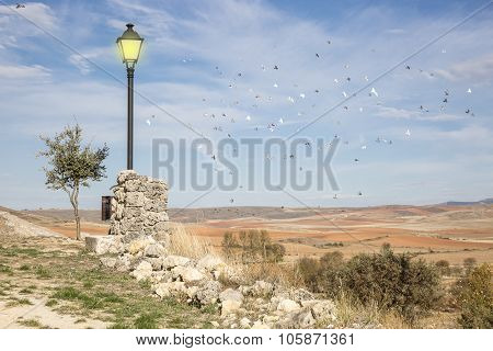 landscape with a lighted lamp on a sunny day, a dry brown land and a flock of birds flying
