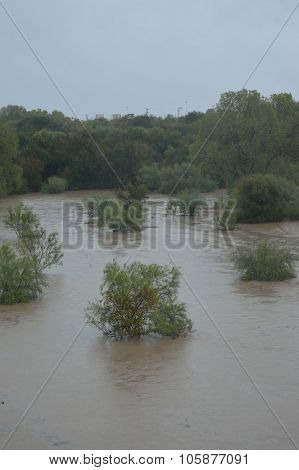 Flood002