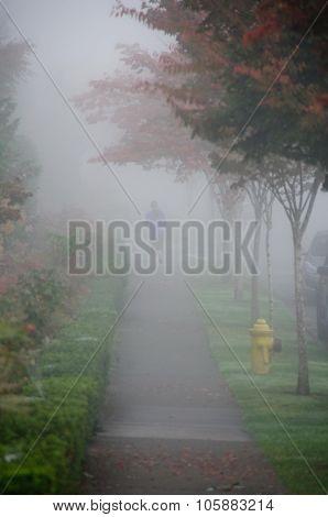 Runner In  Fog