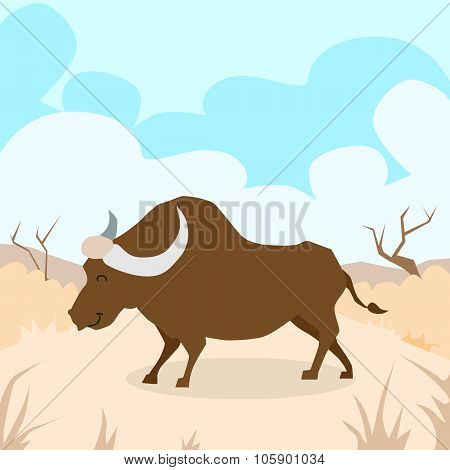 Cartoon Bison Desert Sand Buffalo Colorful