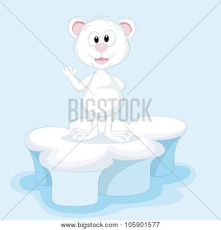 Funny Polar Bear On An Ice Floe