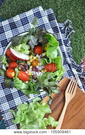 Colorful Salad Bowl Put On Grass
