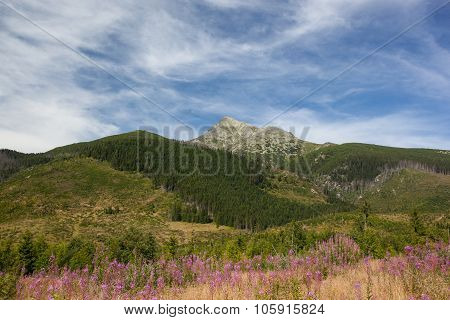 High Mountains - Krivan, High Tatra