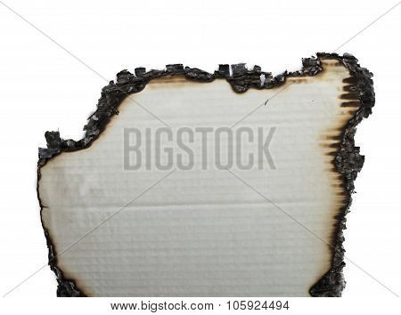 the charred paper on a white background