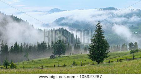 Mist In Mountain