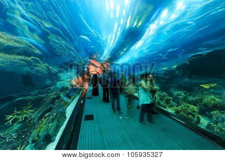 Dubai, Uae - October 07,2014 : Aquarium In Dubai Mall - World's Largest Shopping Mall , Downtown Bur