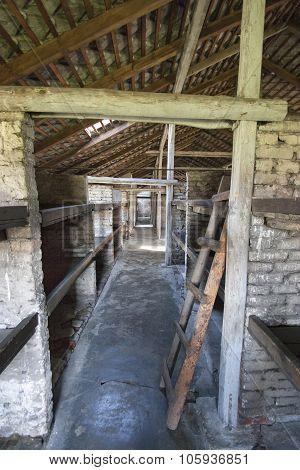 Dormitory Of Birkenau Concentration Camp