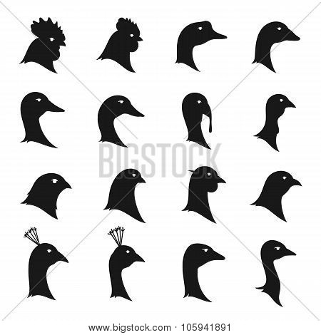 Vector Poultry Icons Isolated On White