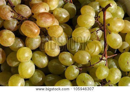 Food. Organic grapes