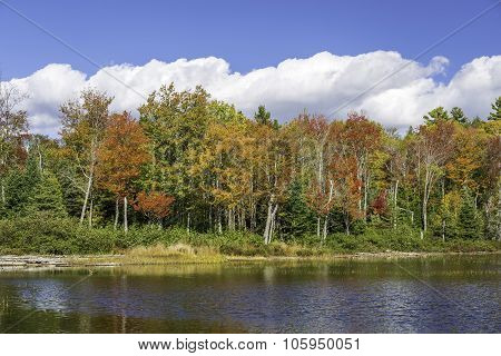 Fall Colors Reflecting Off A Lake In Autumn - Ontario, Canada