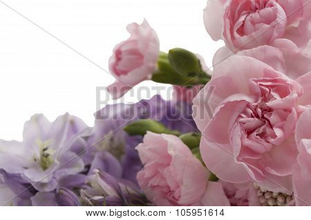 Flowers Isolated Over White