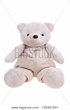 White Teddy Bear Isolated Over White
