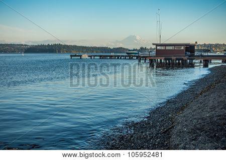 Along Lake Washington - Rainer 5