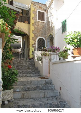 Flowers and staircase by building
