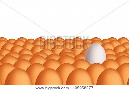 picture of egg22