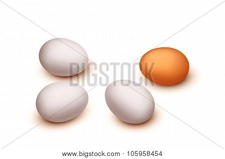 picture of egg group