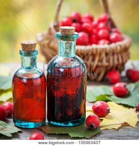 Bottles Of Hawthorn Berries Tincture And Red Thorn Apples In Basket