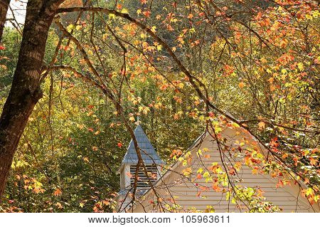 Autumn Leaves and Church