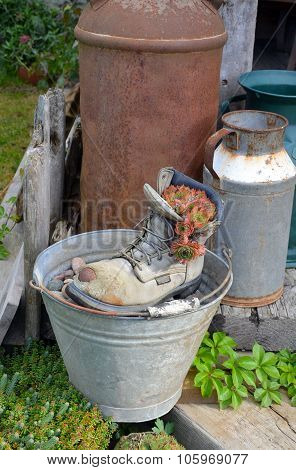 Old Workboot In Garden