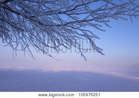 Sunny foggy winter landscape