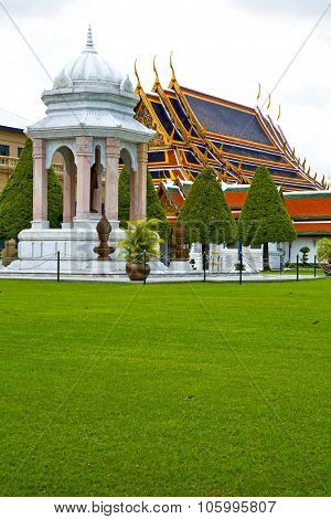 Pavement Gold    Temple      Bangkok  Grass The Temple