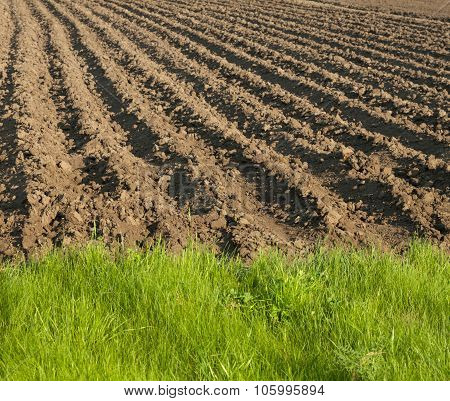 Ploughed Field End