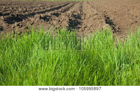 Closeup Of Plowed Farm Field
